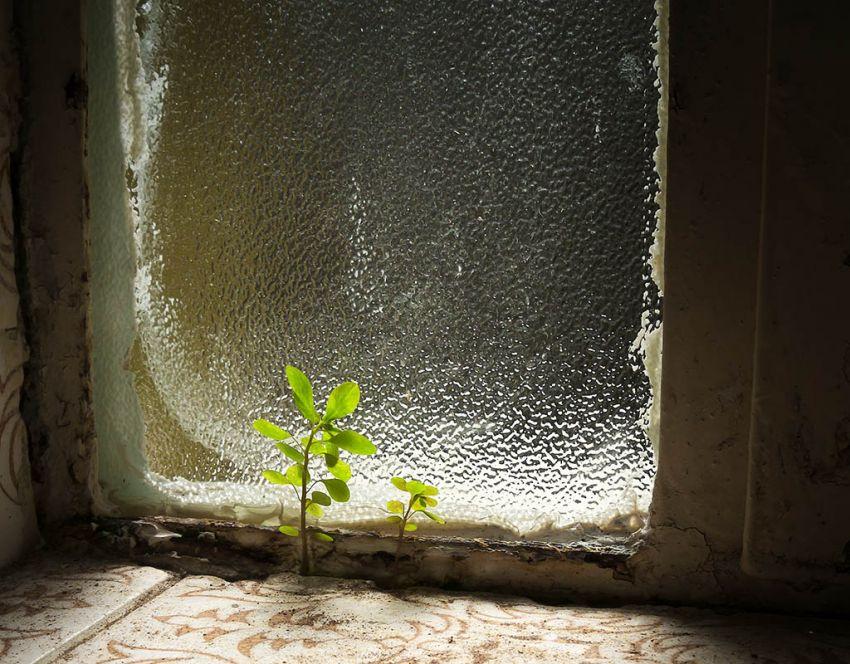 There is always hope - Πάντα υπάρχει ελπίδα