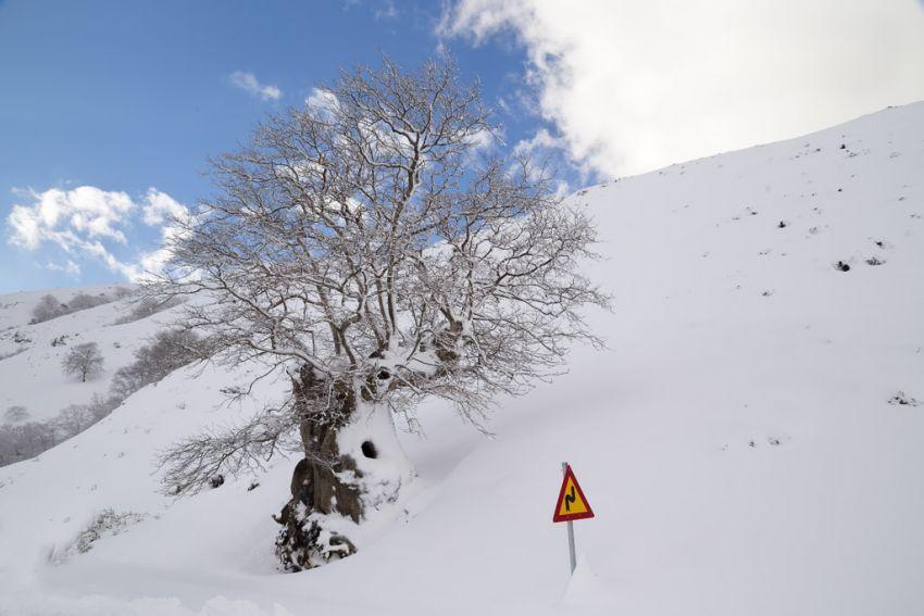 Photo from Nikos Basias Photographer, on the way to Sougia, Chania, Crete.