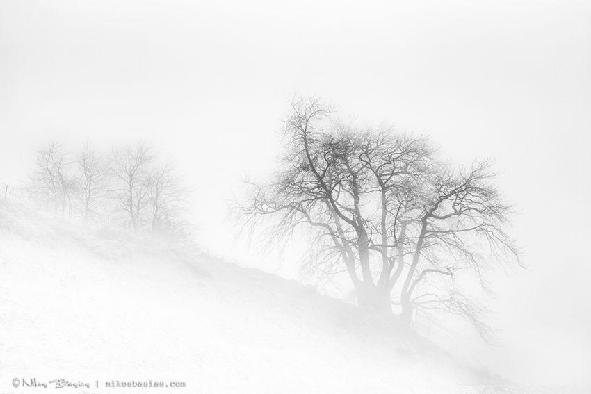 Nikos Basias Photographer